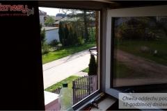 100-przyroda-za-oknem