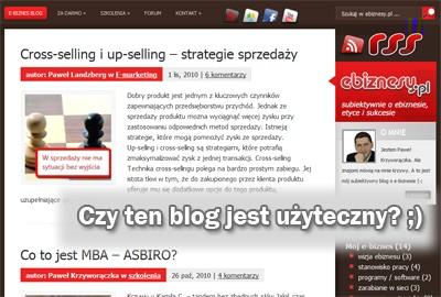 Użyteczność bloga ebiznesy.pl
