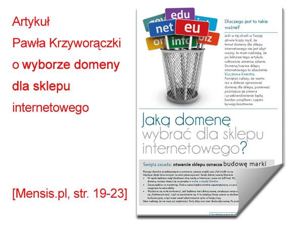 Artykuł o domenach - autor Paweł Krzyworączka
