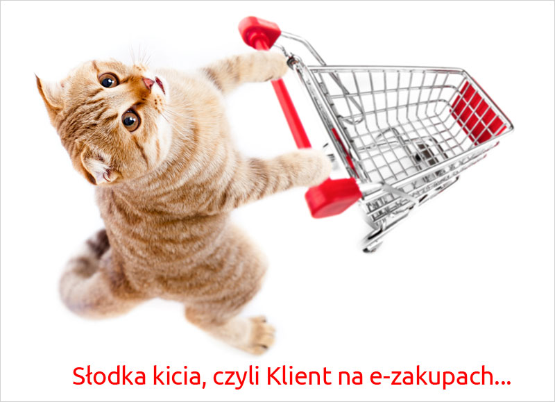 Kicia nae-zakupach