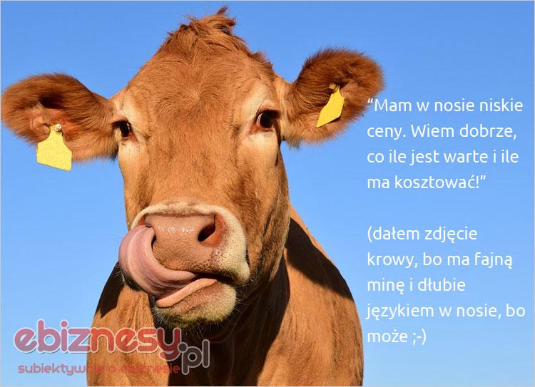 No co? Krowa tez człowiek